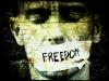 [Opinion] 모든 표현의 자유는 항상 존중받아야 하는 것일까? [문화 전반]