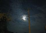 [그대 삶의 쉼표] 보름달