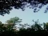 [그대 삶의 쉼표] 잠시 올려다 본 하늘