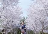 [Opinion] 4월, 봄의 마지막을 함께할 일본 영화 [영화]