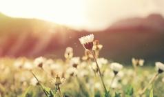 [공간X공감] 봄, 여름 그 사이