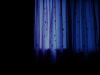 [댑싸리가 자라는 숲] 새벽 다섯 시