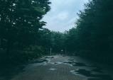 [그대 삶의 쉼표] 비오는 거리