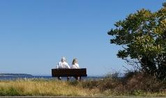 [보암보암] 8월엔 더이상 아로마 향이 나지 않는다 _캐나다 빅토리아(1)