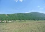 별들이 부르는 곳 몽골, 마지막 이야기