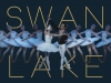 [Preview] 동서양의 만남, 마린스키발레단 '백조의 호수' 내한공연