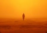 [Opinion] 블레이드 러너 2049 : 과연 인간성은 무엇인가 [영화]