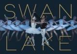 [PREVIEW] 마린스키(프리모스키 스테이지) 발레단 내한공연 '백조의 호수'