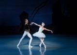 [Review] 발레를 즐겨보다! 백조의 호수.
