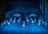 [Review] '발레의 매력' - 백조의 호수(마린스키 발레단)