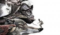[PRESS] 동물들의 인간심판 - 본능과 이성 사이