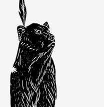 [Preview] 작은 곰; 어른들을 위한 잔혹 우화 [도서]