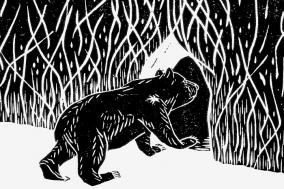[Preview] 작은 곰의 걷기, 살기 [도서]