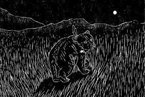[도서] 작은 곰
