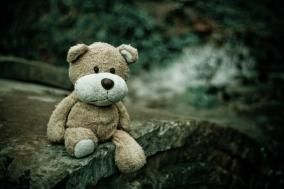 [Opinion] 창작자는 재주 넘는 곰? [문화전반]