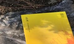 [작가를 ; 읽다] 타카노 후미코 - 책과 사랑에 빠진 적이 있나요?