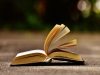 [Review] '출판'의 의미와 가치 : 『출판저널』 통권509호