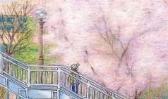 [순간을 기록하다] 벚꽃과의 순간을 기록하다