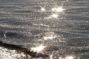 [Review] 아득한 바다의 밑바닥을 향해 : 스위밍 레슨 [도서]