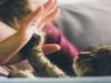 [Review] 귀엽고 앙큼한 고양이들의 인간 사용법 - 멍청한 인간들과 공존하는 몇 가지 방법