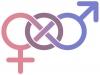 [Opinion] 조선시대에 젠더퀴어가 있었다면? 동성혼을 했다면? 흥미로운 고전의 세계 - 방한림전 [도서]