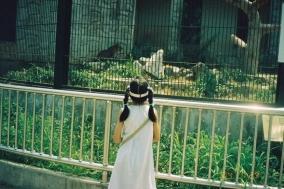 [Opinion] 2004년 7월 29일 발굴기 [사람]