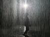[Opinion] 폭우 속에서도 젖지 않는 방법 [시각예술]