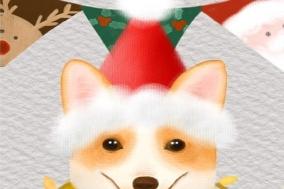 [오늘의 생각] 크리스마스