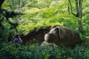 "[Opinion] 영화 ""기생충"" 이전의 칸 영화제 진출작, 영화 ""옥자""를 얘기하다 (2부) [영화]"
