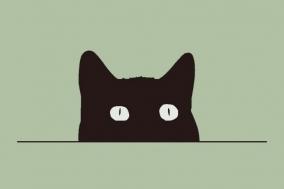 """[Review] 끝없는 과학적 상상 - """"나는 슈뢰딩거의 고양이로소이다"""""""