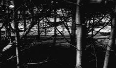 [베개와 천장 사이] 01. 외로움의 메커니즘