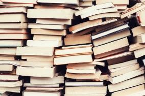 [도서] 문학에 빠져 죽지 않기