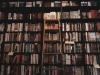 [Review] 문학을 통해 삶에 빠져 죽지 않기 - 문학에 빠져 죽지 않기 [도서]
