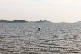 [Opinion] 여수밤바다 2. [여행]