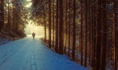 [Project 당신] 성실하게 뚜벅뚜벅 걸어가는 사람 - 진금미 에디터를 만나다