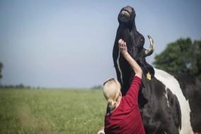 [Opinion] 동물들의 '낙원', Butenland [영화]