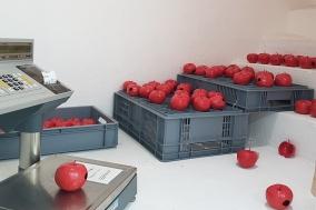 [Opinion] 예술가의 작품과 노동에 값을 매기는 방법 [시각예술]