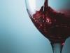 [Review] 구원받지 못할 세상에서 부르는 노래 - 와인으로 얼룩진 단상들