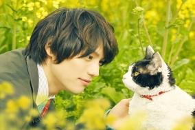 [Opinion] 고양이 이별법 - 고양이 여행 리포트 [영화]