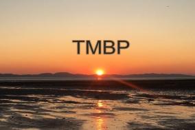 [에세이] TMBP 09. 취업을 준비하는 마음