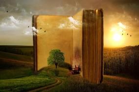 [Opinion] 이 시대에 시를 읽을 당신을 위한 지침서 [도서/문학]