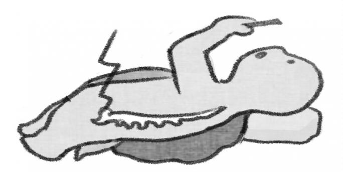 [거북이의 손그림] 올바른 자세의 중요성에 대하여