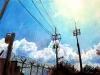 [거북이의 손그림] 푸른 오후의 하늘은