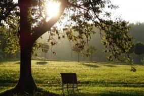 [Review] 내 삶은 시작되는 봄과 같다 - 존재와 사유