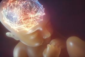 [PRESS] 어렵지도 불편하지도 않은 뇌과학과의 만남 - 세계를 창조하는 뇌 뇌를 창조하는 세계