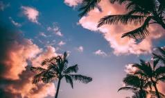 [에세이] 여름.