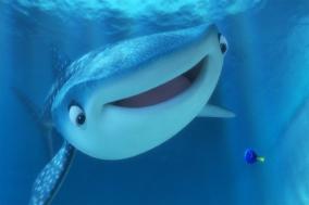 [Opinion] 저는 고래상어 좋아합니다 [동물]