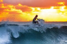 [Review] 삶이라는 서핑에 올라타는 법에 대해 - 노력의 기쁨과 슬픔