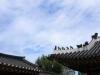 [Review] 궁궐 덕후 친구와 함께 궁으로 - 아주 사적인 궁궐 산책