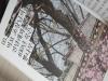 [Review] 도심 속의 고궁, 아주 사적인 궁궐 산책